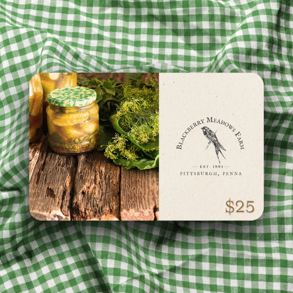 $25 gift card on a green gingham cloth.