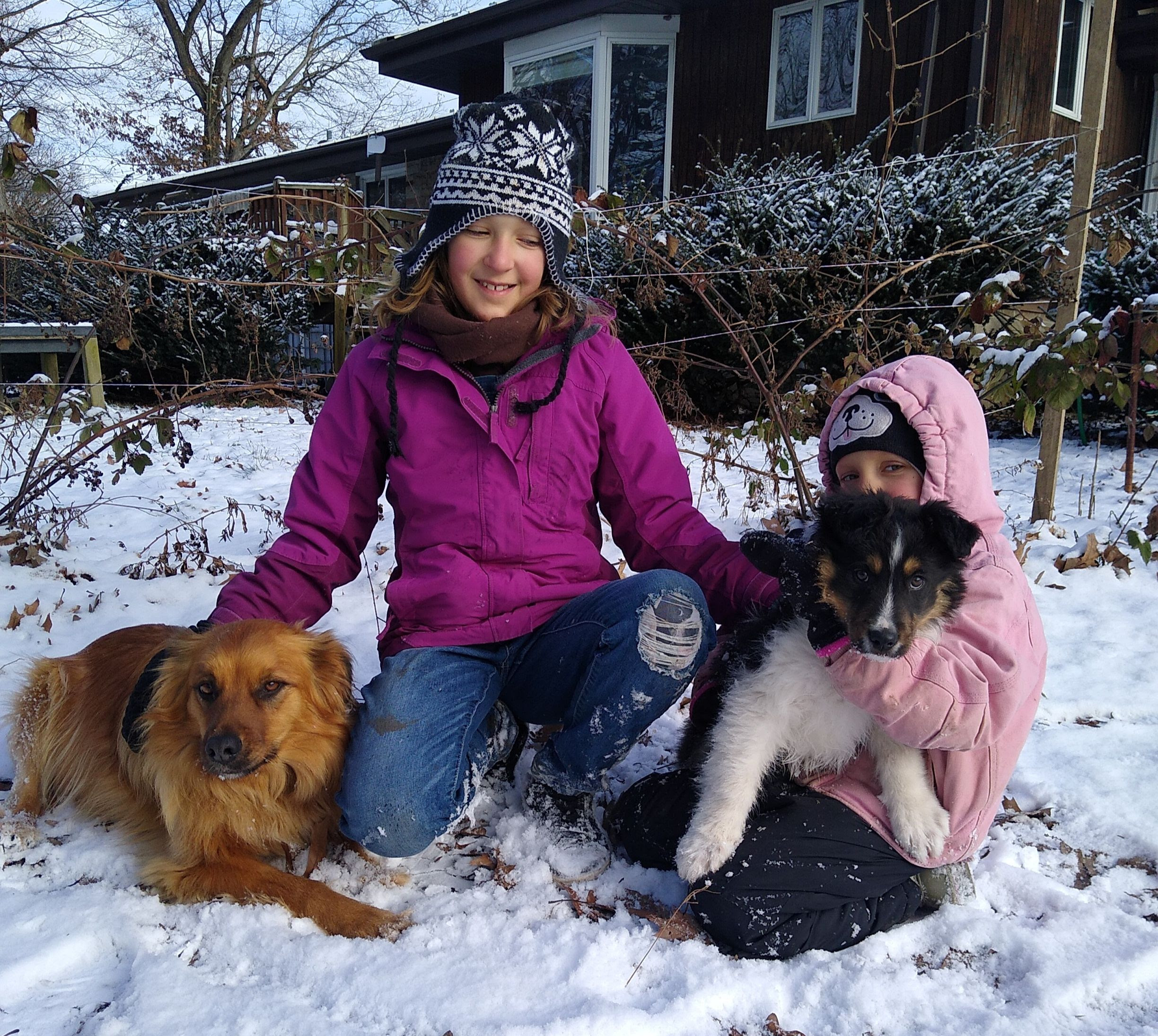 Evelyn and Olivia with their dogs in the snow.