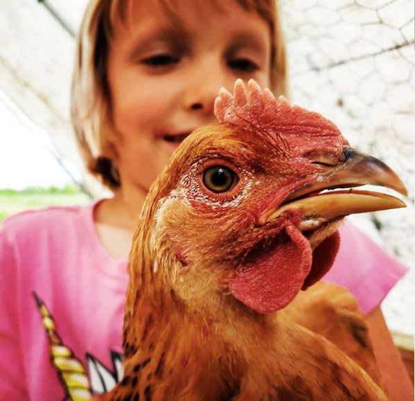 A girl holds a chicken in front of the camera